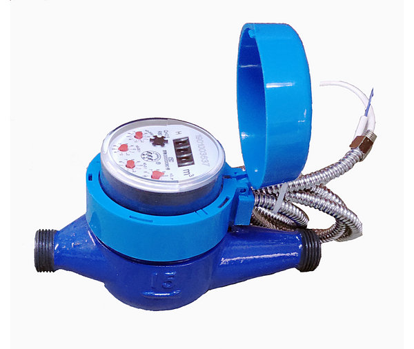 Electronic remote water meter